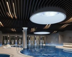 蓝光地产雍锦半岛顶面泳池木纹圆弧铝板